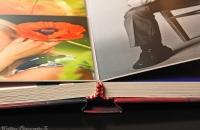 books-photo-5