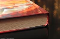 books-photo-7