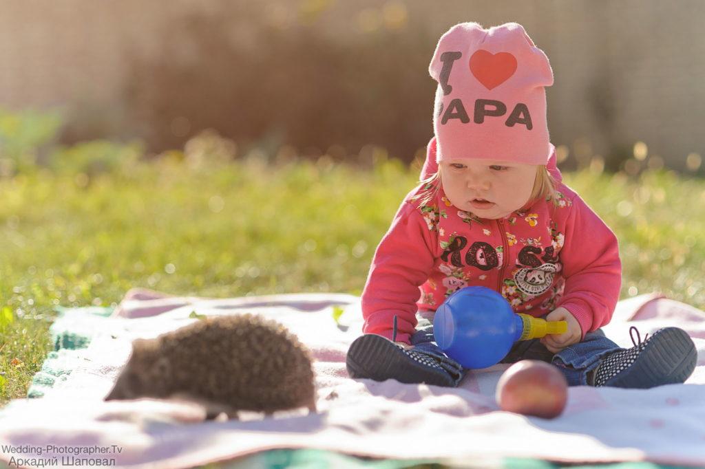 Детская фотосессия с ежиком